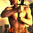 Norse Jewel on Sale 99 cents! | Gina Conkle