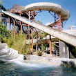 Waterparks in Dallas and the Surrounding Metroplex | Tex Dot Org