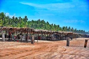 Playa Nov