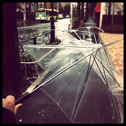 Massive #storm came over #Japan. My #umbrella became a casualty.