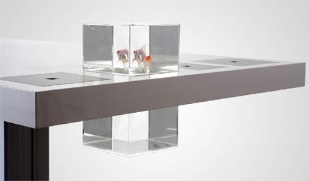 Aquário Mesa: embutido da mesa