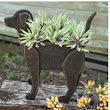 Black Lab Planter | coast2cottage