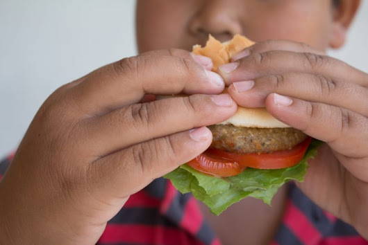 Here's How to Counter Digital Junk-Food Marketing:Inside Children's Blog