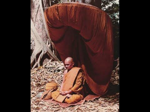 Thấy biết đi đôi với trí tuệ mới giúp chúng ta giác ngộ giải thoát - Ajahn Chah