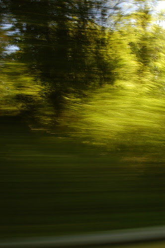 everything a blur of green