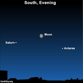 Moon between Antares and Saturn | EarthSky.org