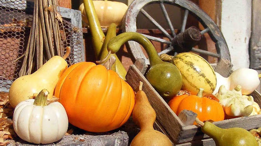 Tips for decorating your porch for fall