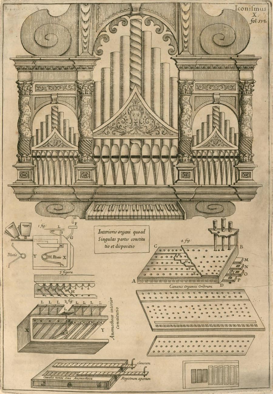 schematics of organ