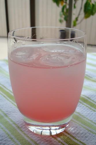 Rhubarb Soda Cocktail