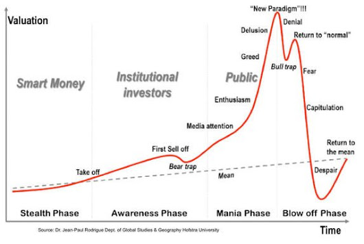 Has the Bitcoin Bubble Burst Or Is There More? | Brilliant Read