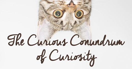 The Curious Conundrum of Curiosity