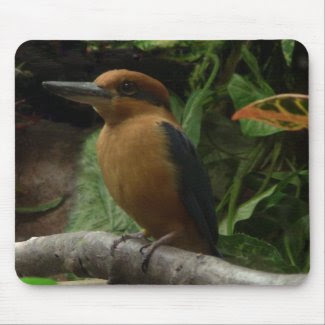 Micronesia Kingfisher Mouse Pad