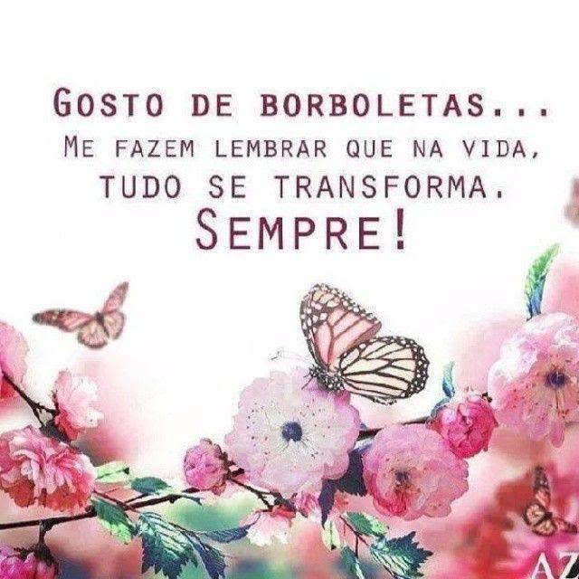 Como é linda a transformação da borboleta! #Padgram