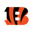 Chicago Bears at Cincinnati Bengals