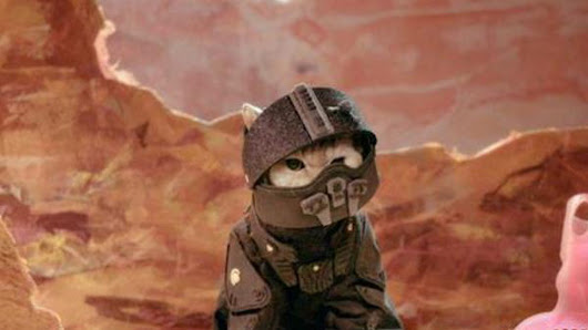 This is a terrible recap of The Expanse, except that it's full of cats in cute costumes