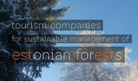 Tourism companies for sustainable management of Estonian forests - Ecotourism News & Views | ECOCLUB.com