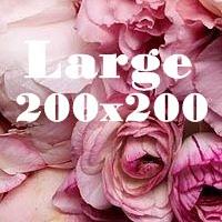 Large 200x200 ad