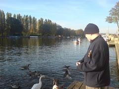 me feeding ducks