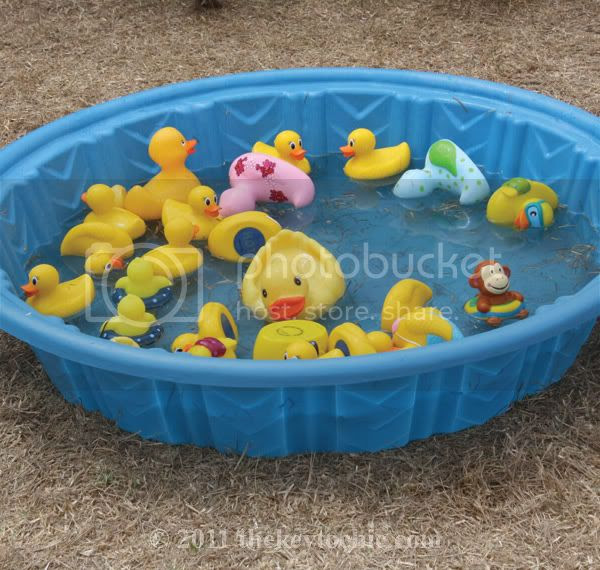 mini pool, rubber ducks, Pooch Parade