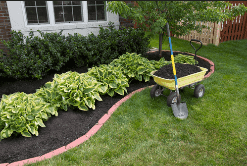 Reasons to Mulch Your Tree and Garden | Caledon Treeland