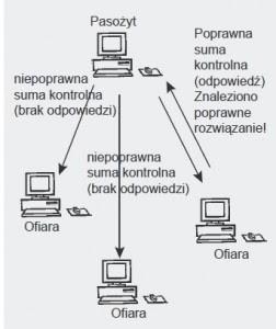 Rysunek 2. Działania mechanizmu obliczeń pasożytniczych