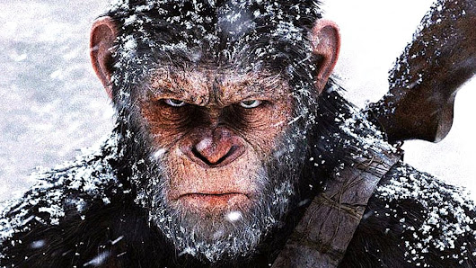 PLANET OF THE APES Franchise Recap To Prep You For WAR FOR THE PLANET OF THE APES - Oodon