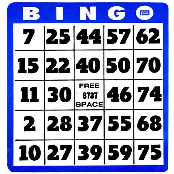 1000+ ideas about Bingo Card Generator on Pinterest   Free bingo ...