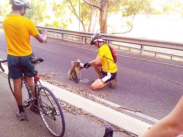 Parakseno.gr : kindness5 Απροσδόκητες πράξεις καλοσύνης που συγκινούν…