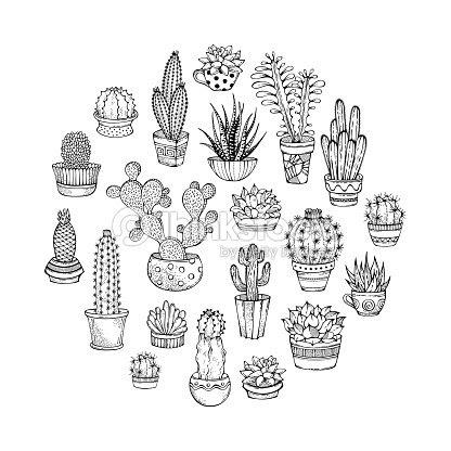 サボテンと多肉植物の落書きイラストをラウンドします ベクトルアート