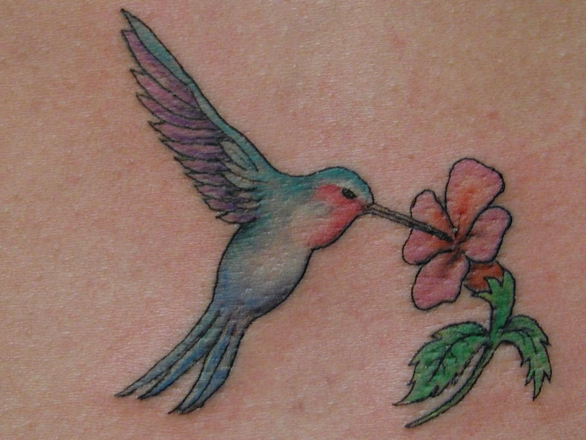 Small Pink Flower Hummingbird Tattoo