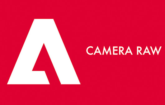 Adobe Camera RAW 10 and DNG Converter 10 Released - Daily Camera News
