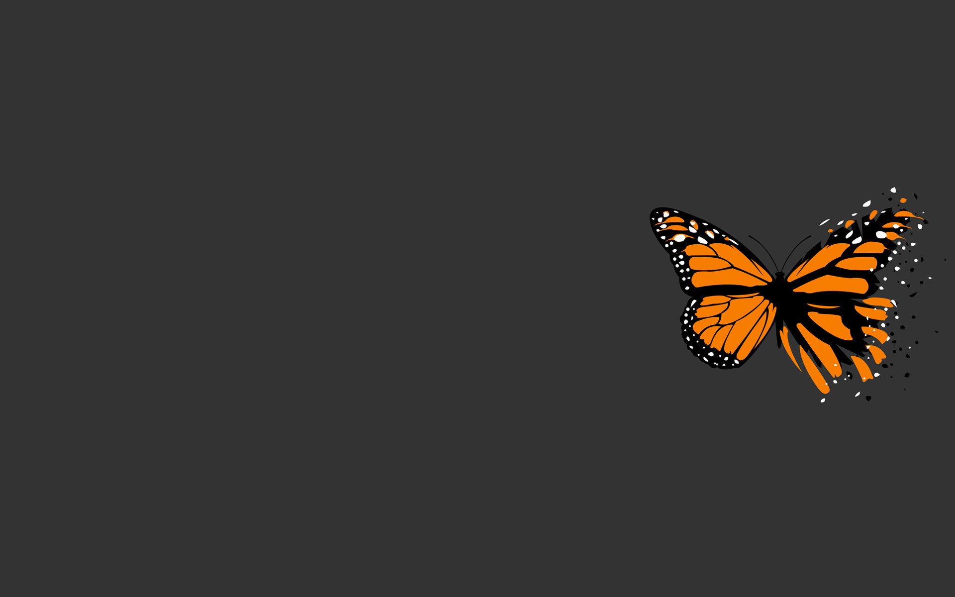 Black Butterfly Background Wallpaper (68+ images)