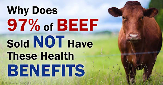 What You Need to Know About Grass-Fed Beef