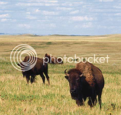 Top 10 Tourist Attractions in North Dakota