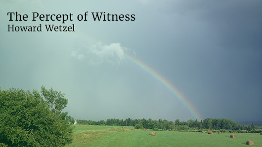 The Percept of Witness | Howard Wetzel
