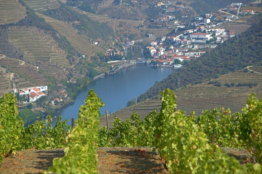 Where To Stay In Douro Valley: Best Douro Hotels & Quintas