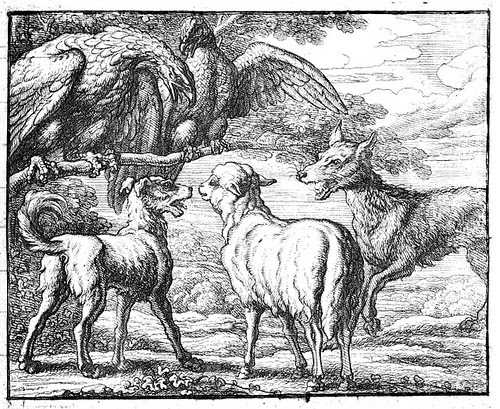 canis et ovis