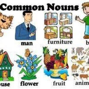pengertian common noun  proper noun contoh kalimatnya