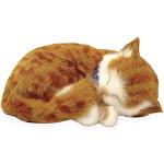 Perfect Petzzz Kitty, in Orange