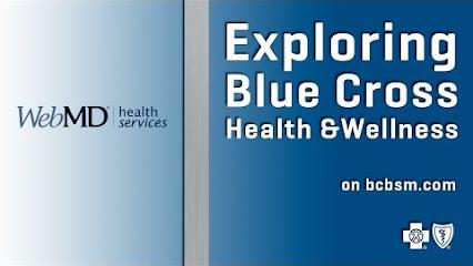 Blue cross blue shield of michigan customer service
