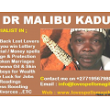 Dr Malibu - Come to me for all financial problems - Classified Ad