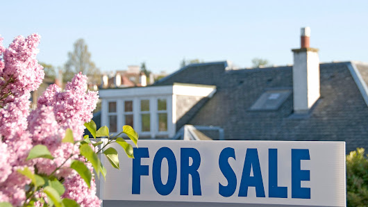 Budding Signs of a Crazy Spring Buying Season - Real Estate News and Advice - realtor.com