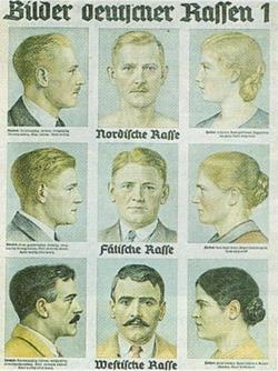 Tavola didattica in uso nelle scuole del Reich per l'identificazione delle razze germaniche, 1935