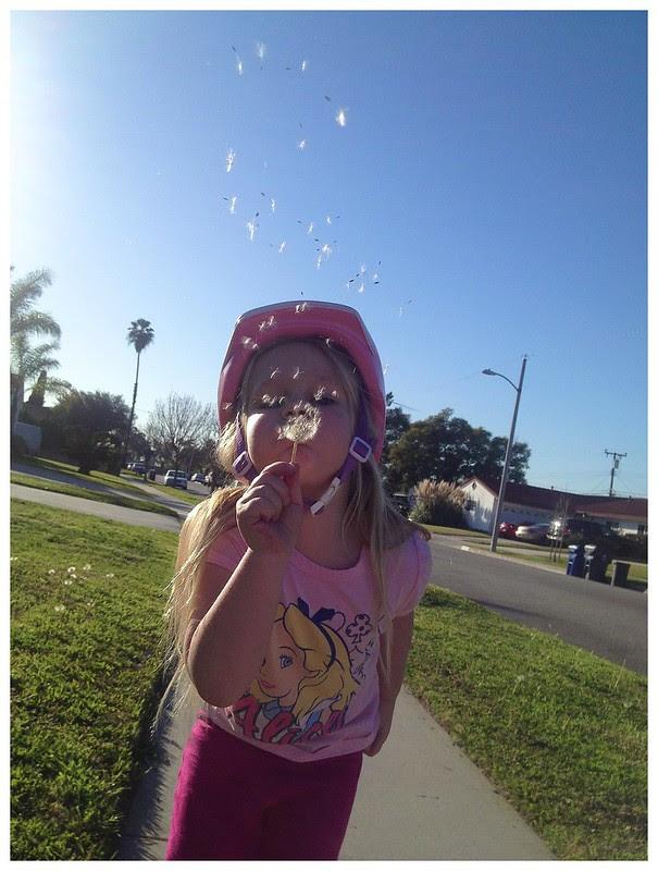 Making a wish feb 2013