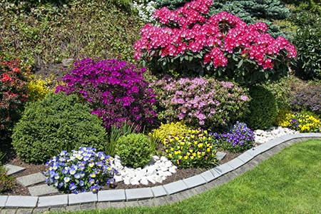 Is It Time to Update Your Landscaping?