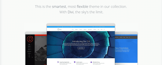 Detailed Review of Divi WordPress Theme - Killer WordPress Theme