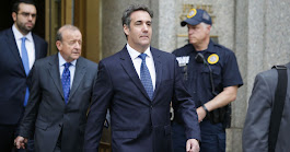 Cohen Pleads Guilty to Fraud, Campaign-Finance Violations