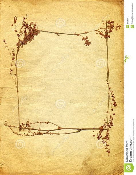 Vintage Background With Floral Frame Stock Illustration
