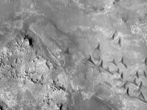 Candidate Landing Site for 2020 Mission Near Nili... | BEAUTIFUL MARS