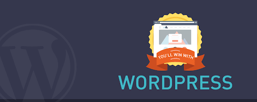 You'll Win With WordPress - Infographic - WinningWP